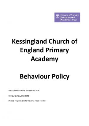 thumbnail of Behaviour-Policy-2016